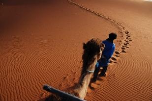 Dunes 02