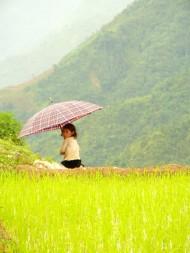 Enfant du Vietnam02