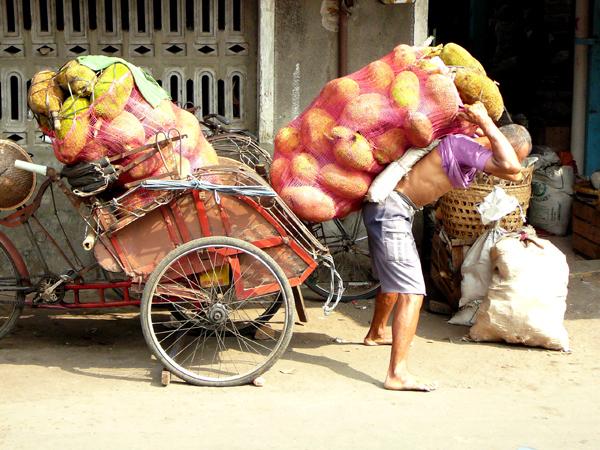 porteur-de-fruits-jogyakarta-indonesie